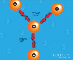 Colloid particles repel one another due to presence of similar charges