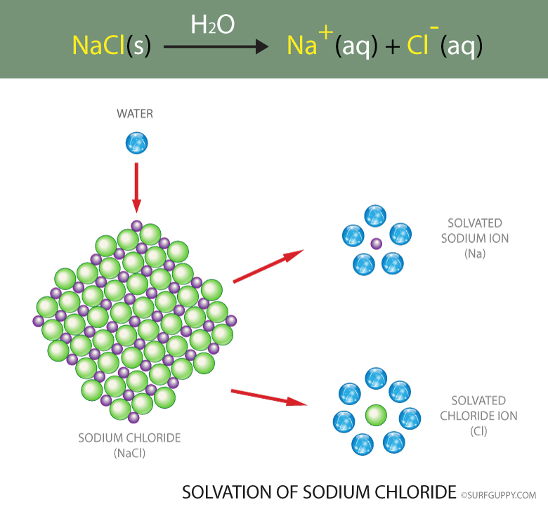 Sodium chloride breaks down to individual ions and are hydrated with water molecules in the process of solvation