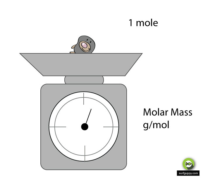 Molar Mass - chemistry
