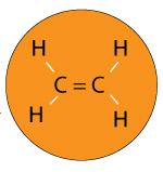 a-monomer