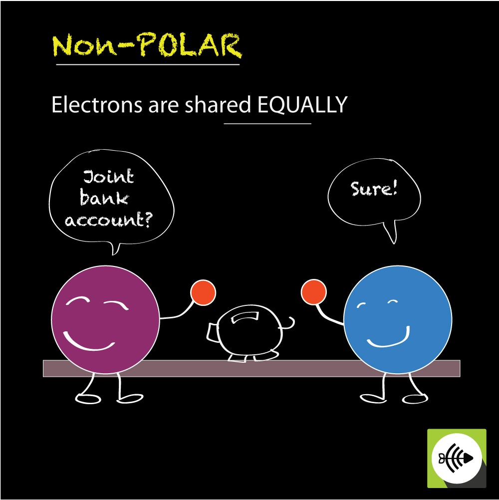 non polar covalent bonds electrons shared equally