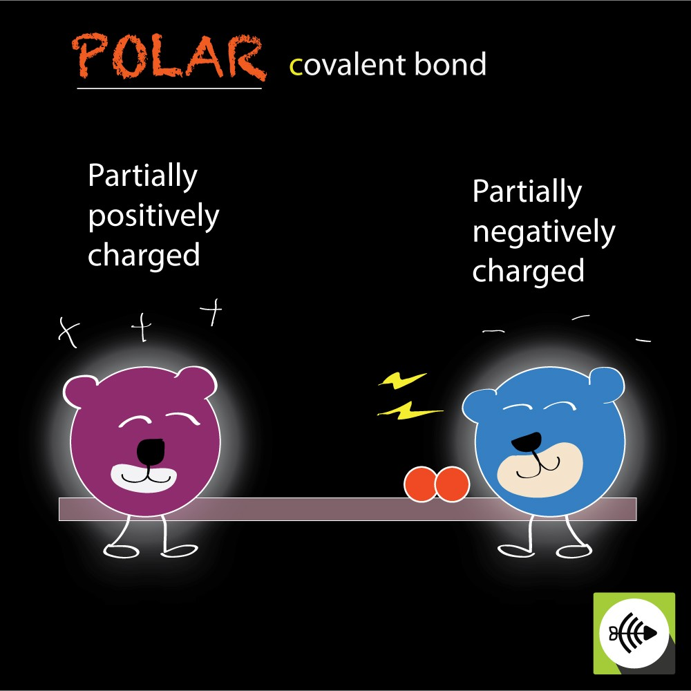 Polar covalent bonds with partially charged atoms