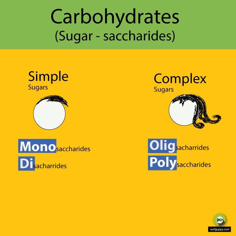 Organic Chemistry - Carbohydrates - Simple Sugar - Complex Sugars