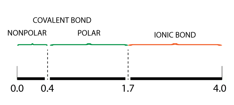 Electronegativity bond scale