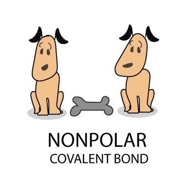 nonpolar covalent bond
