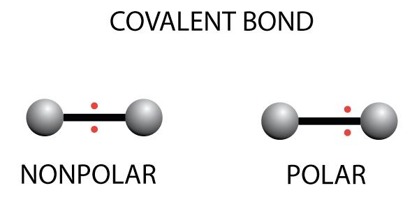 Covalent bond - polar and nonpolar