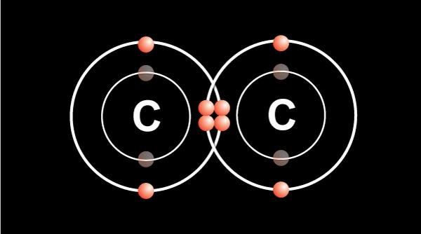 Carbon-carbon double bond