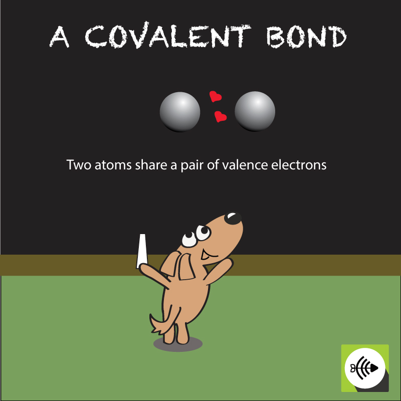 In a covalent bond, two atoms share a pair of electrons