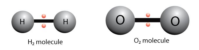 Nonpolar covalent bonds, H2 and O2 molecules