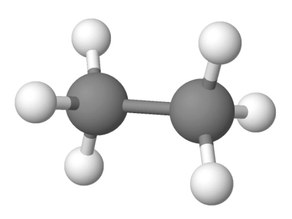 Ethane is a hydrocarbon that contains a single carbon–carbon bond