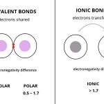 Electronegativity Bond Scale