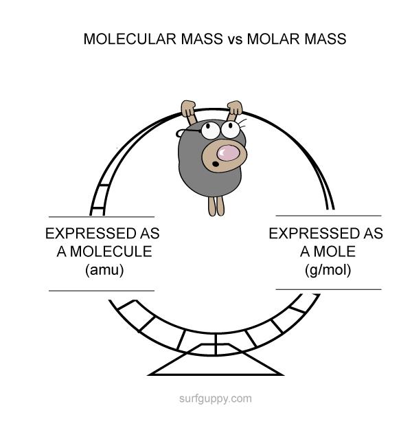 molecular mass vs molar mass
