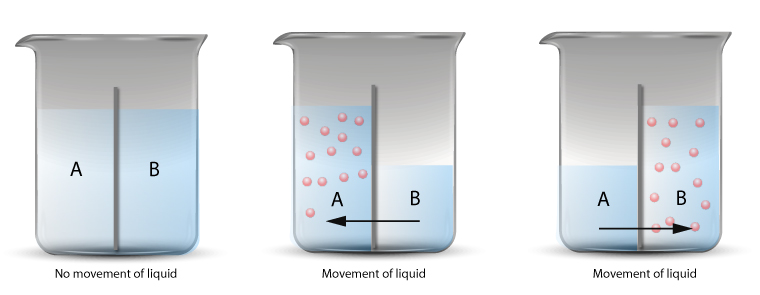 Semi-permeable membrane and osmotic flow