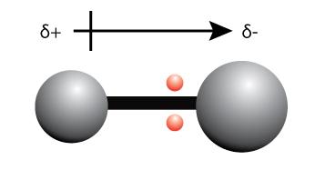 a bond dipole