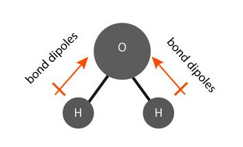 Polar bonds in a water molecule